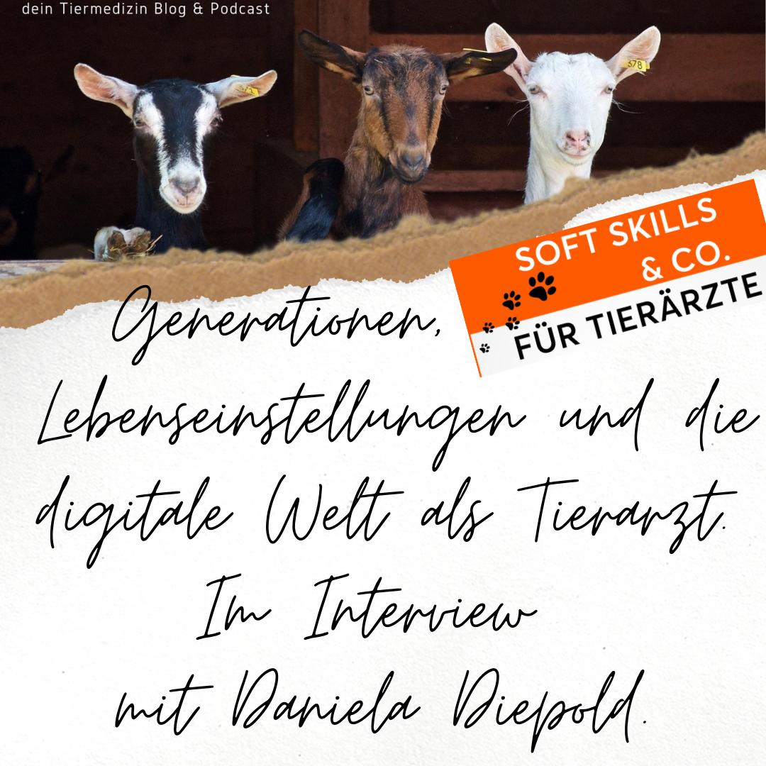 Vet academy Kommunikation Daniela Diepold